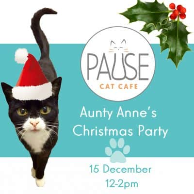auntyannebanner - product catmas party