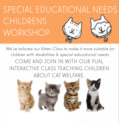 Pause Cat Cafe SEN Childrens Workshop