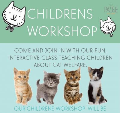 pause-cat-cafe-childrens-workshop