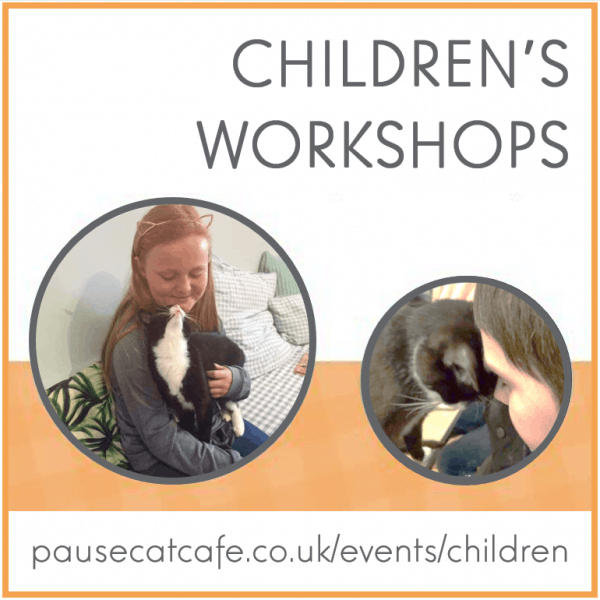 childrens-workshops-Sq-pause-cat-cafe-product